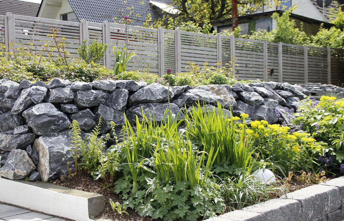 ehrf rchtige pflanzen f r den garten einzigartige ideen zum sichtschutz. Black Bedroom Furniture Sets. Home Design Ideas